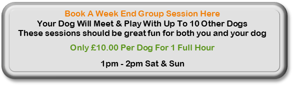 Click Here To Book A Weekend Group Session